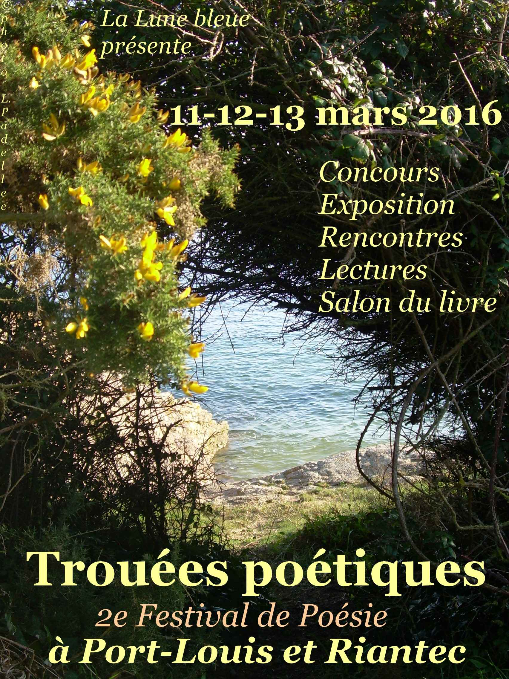 Affiche Festival Trouées poétiques 2016 bis